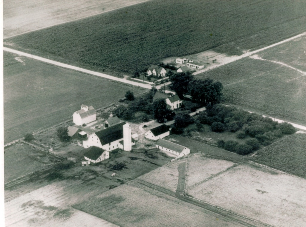 Lute farm.jpg