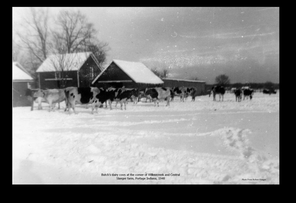 Slanger Farm 001.jpg
