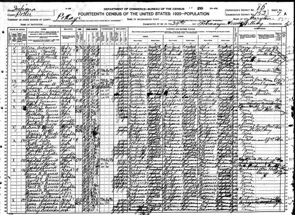 Brandt Victor 1920 census.jpg