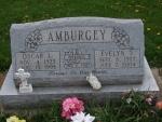AMBURGEY.JPG