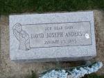 ANDERSON David Joseph.JPG