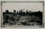 Brandt victor Farmland abt 1900.JPG